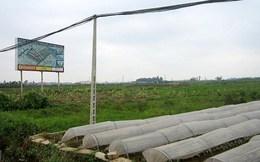 Hà Nội có 359 dự án vi phạm pháp luật về đất đai