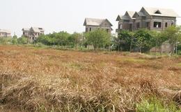 Rà soát hơn 4.000 dự án bất động sản trên cả nước