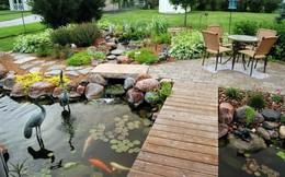Mùa hè mát lạnh với hồ nước nhỏ trong vườn nhà