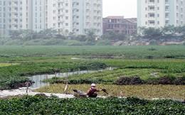 Điều kiện chuyển đổi đất nông nghiệp sang đất ở