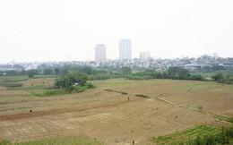 Hà Nội đồng ý cho thuê đất bãi sông Hồng