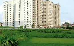 Tổ chức có vi phạm đất đai không được giao đất để thực hiện dự án