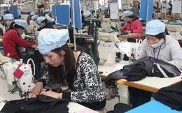 50% số người thất nghiệp tại Việt Nam là thanh niên