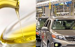 Đánh thuế tự vệ, doanh nghiệp dầu thực vật chớ vội mừng