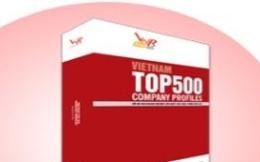 'Soi' kết quả hoạt động của 500 DN tăng trưởng nhất Việt Nam