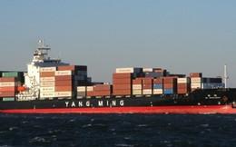 DCT: Được nhận 38,5 tỷ đồng từ vụ đâm cầu cảng