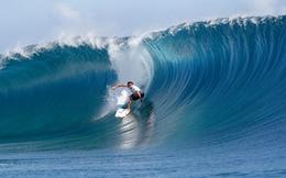 Năm 2014: Lướt sóng như VIX