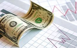 TCO: Dự kiến phát hành 3,2 triệu cổ phiếu cho cổ đông hiện hữu, giá 12.000 đồng/cp