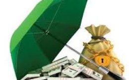 AVF: Thông qua phương án chào bán gần 14 triệu cổ phiếu giá 5.000 đồng/cổ phiếu