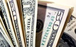 VDS: Quỹ đầu tư Việt Long đã thoái toàn bộ 2,06% vốn