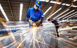 """6 đặc điểm """"nhận dạng"""" doanh nghiệp Việt"""