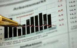 Gạch ngói Nhị Hiệp sẽ ngưng sản xuất gạch ngói từ giữa tháng 8/2014