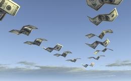 Cát Lợi CLC báo lãi 71 tỷ đồng năm 2013, vượt kế hoạch 56%