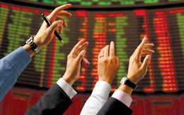 Lỗ khủng năm 2013, cổ phiếu Pomina bị đưa vào diện cảnh báo