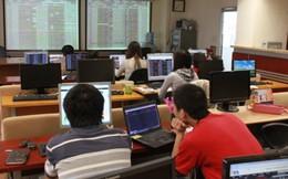 PNC, DCT: Cổ phiếu có khả năng bị tạm ngừng giao dịch