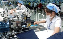 """Ts.Trần Đình Thiên: Khối FDI đang lớn lên """"theo cách không bình thường"""""""