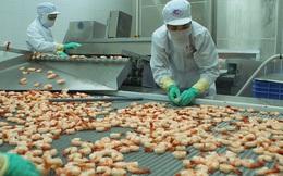 ĐHCĐ Thủy sản Minh Phú: Cổ đông nhỏ lên tiếng, công ty chấp nhận trả cổ tức 15%