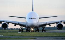 Bao tiền một 'con' Airbus?