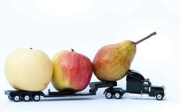 Công ty đa quốc gia nắm giữ 80% thị phần logistics Việt Nam