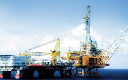 Các giàn khoan dầu của Việt Nam có quy mô ra sao?