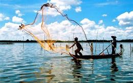 Nghị định mới: Ngành thủy sản được hưởng ưu đãi những loại thuế nào?