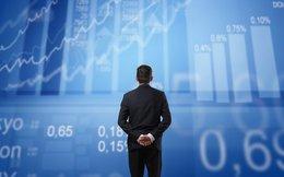 SCIC đăng ký thoái lượng cổ phiếu DQC và HAI trị giá 360 tỷ đồng