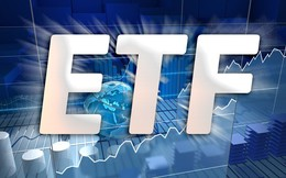 """""""Soi"""" danh mục gần 9.000 tỷ của FTSE Vietnam ETF trước ngày review"""