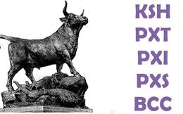 Cổ phiếu đáng chú ý ngày 10/9: Nhóm PVX 'thăng hoa'