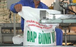 Đấu giá hơn 30 triệu cổ phần của Công ty DAP Đình Vũ