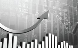 Hai sàn biến động trái chiều, tổng giá trị giao dịch đạt gần 4.200 tỷ đồng