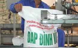 IPO Công ty DAP Đình Vũ: 64 cá nhân đặt mua hơn 30 triệu cổ phần