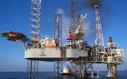 Nhiều đại gia ngoại 'đổ bộ' vào lĩnh vực năng lượng ở Việt Nam