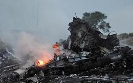Vợ chồng người Malaysia 2 lần thoát chết khi từ chối máy bay MH17