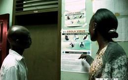 WHO xác nhận hơn 930 trường hợp tử vong do dịch Ebola