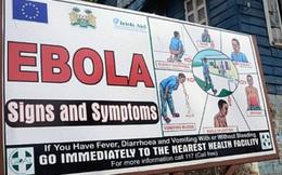 Hà Nội: Xây dựng kế hoạch phòng chống sốt xuất huyết do vi rút Ebola