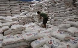 Thái Lan tự tin sẽ giành được gói thầu 500.000 tấn gạo của Philippines