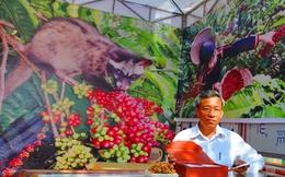 Cà phê chồn đắt nhất hành tinh sản xuất ở Việt Nam