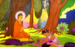 Đức Phật và hạt cải vô thường