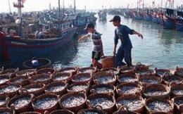 Kinh tế biển và mục tiêu góp một nửa GDP vào 2020