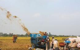 Khi trụ đỡ nông nghiệp bị lung lay