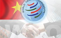 """Hậu WTO: Muốn thành """"người lớn"""" không thể bất cẩn"""