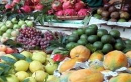Mẹo phân biệt hoa quả Trung Quốc