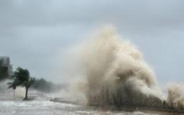 Hải Phòng, Thái Bình, Quảng Ninh sẽ là trọng tâm bão đổ bộ