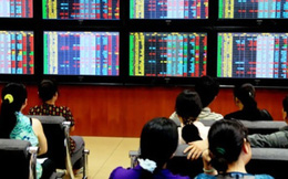 Năm 2013: Quy mô thị trường chứng khoán đạt 31% GDP
