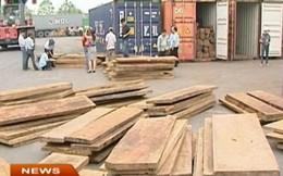 Những tình tiết bất thường trong hoạt động nhập khẩu gỗ