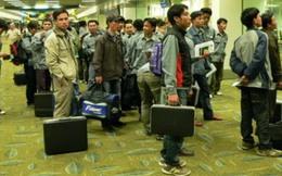 Năm 2014, Hàn Quốc tiếp nhận trở lại lao động Việt Nam