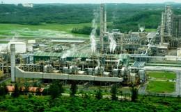 Nhà máy lọc dầu Dung Quất sẽ tạm ngưng 2 tháng