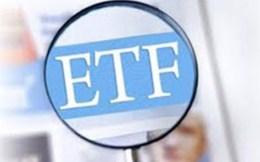 Quý II/2014: Sẽ có quỹ ETF nội địa đầu tiên