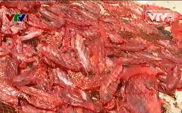 Hàng thủy sản trong nước có hay không việc sử dụng chất cấm?