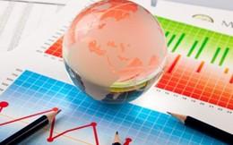STC, CCM (mẹ): Lãi sau thuế quý I/2014 tăng trên 25% so với cùng kỳ